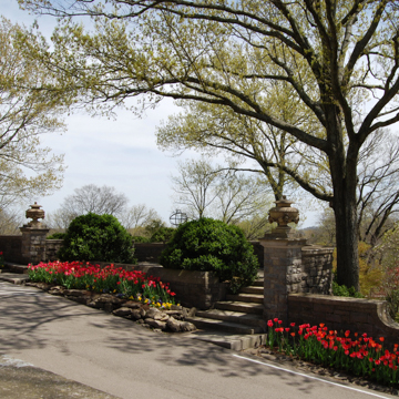 ... Cheekwood Botanical Garden And Museum Of Art ...